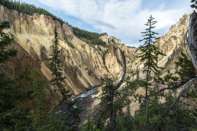 Grand Canyon of Yellowstone - Yellowstone N.P.